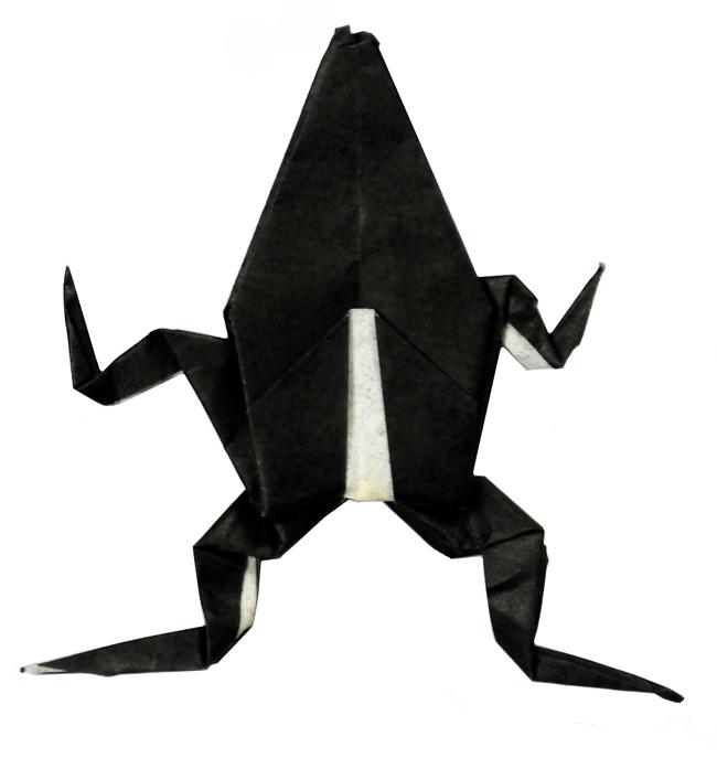 Steve's Black Frog LR